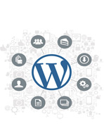 Wordpress Custom Themes Development and Customization